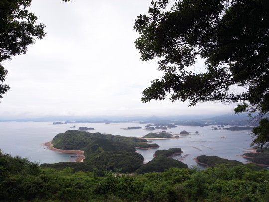 sasebo_trail_roots08