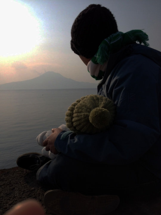 sakurajima_Roots