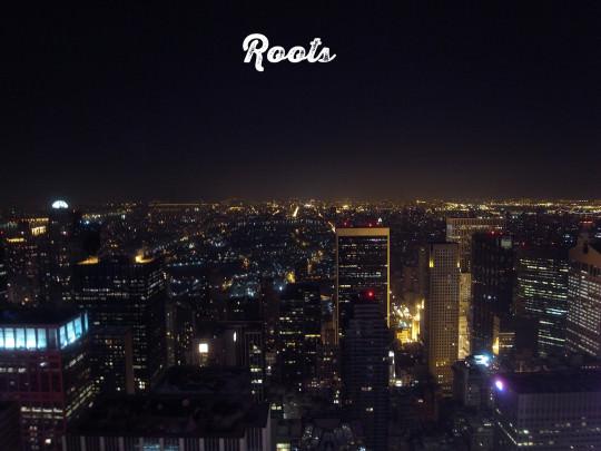 2010暮れ、ニューヨークの夜景