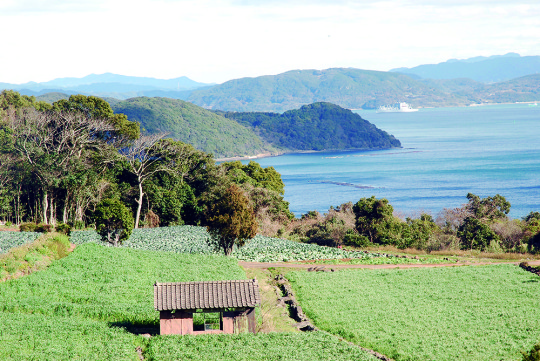 俵ヶ浦半島の豊かな風景