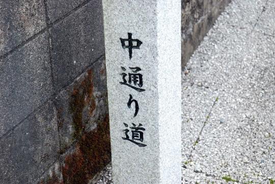 mikawachi04