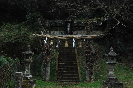 mikawachi11